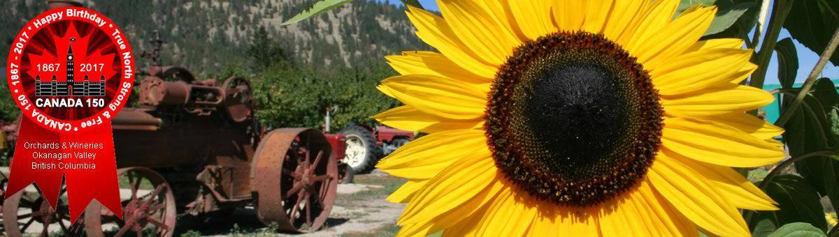 Orchard and Wine Tours in the Okanagan