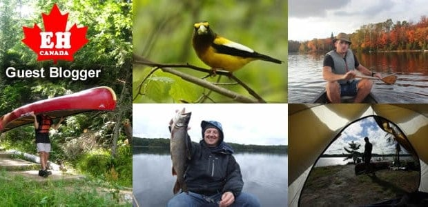 Algonquin Park is a fun-filled adventure waiting to be discovered. Each season provides a number of diverse activities for people of all ages and levels of desired outdoor adventure. The […]