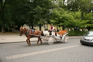 Horse Sightseeing Tours in Quebec City