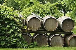 Ontario Canada Wine Tours & Vineyards
