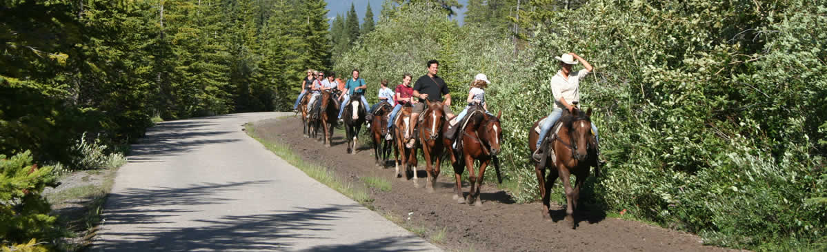 alberta horseback riding trails