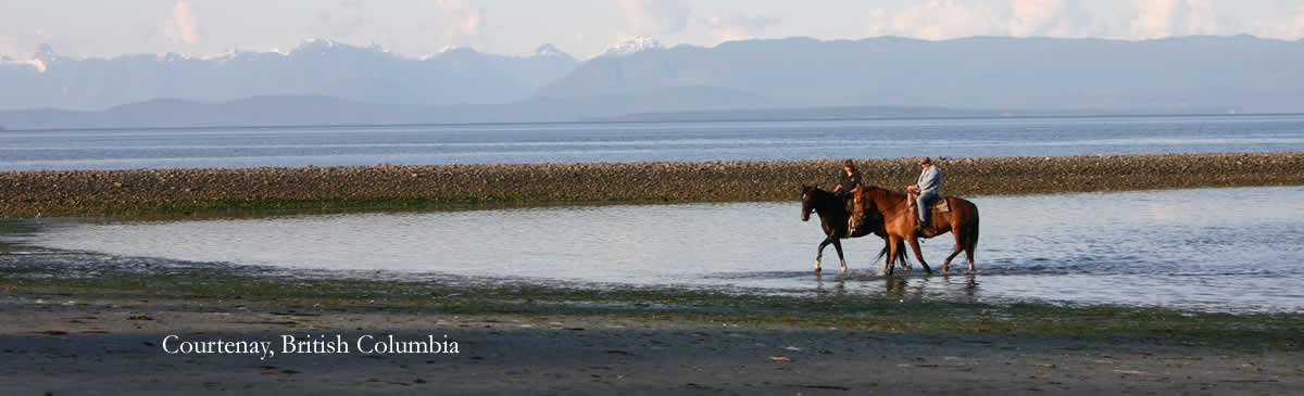 Horseback Riding on Vancouver Island