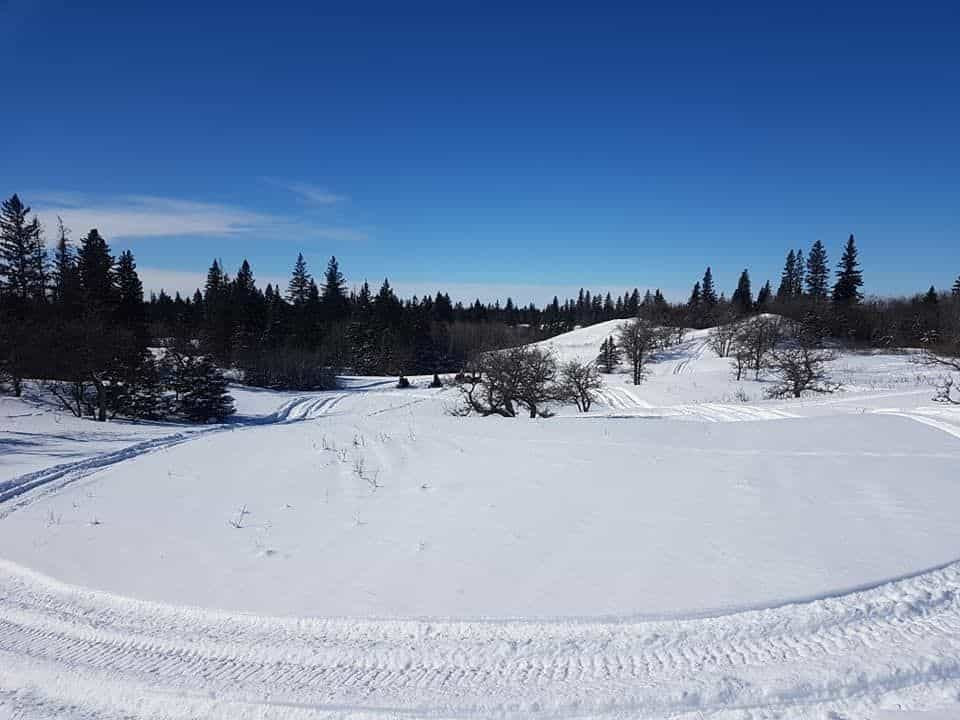 Thynne Mountain Snowmobile trails (Brookmere)