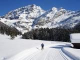 (XC Skiing) Cross Country Skiing Tips