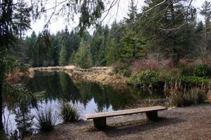 Courtenay Parks Trails Eh Canada Travel Guide Eh