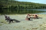 fisheye_lake_picnic