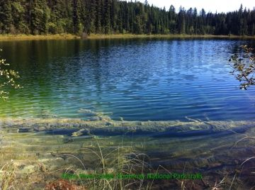 Cobb Lake - Kootenay National park