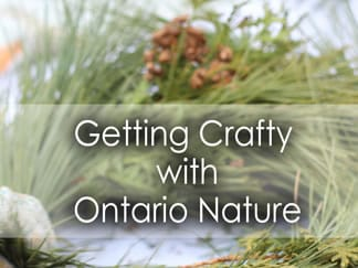 Getting Crafty with Ontario Nature