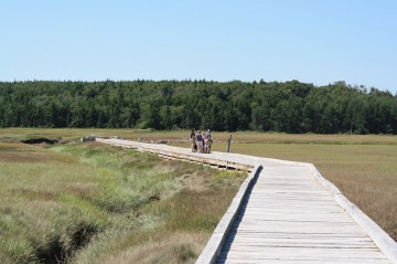 irving-nature-park-boardwalk20100819_87