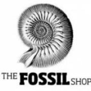 The Fossil Shop