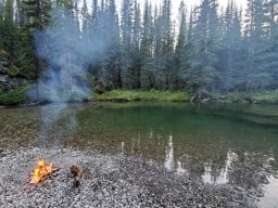 Perfect camp spot - Tucked just off the river, we set up our tent and went fishing! Made some steaks over the fire and enjoyed the starry sky ✨ Caught a nice Cutthroat Trout while here. Crowland camping ?