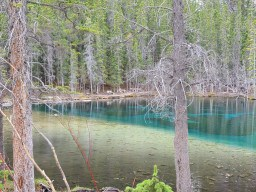 Grassi Lakes  - No filter! That is actually the natural colour of this water. It's a beautiful relatively easy trail to get to these 2 gorgeous lakes.