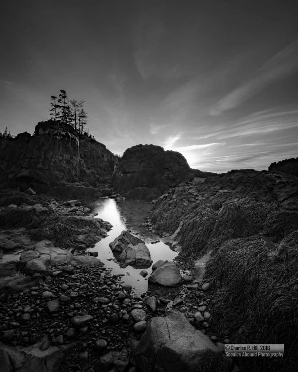 fd5e5f871255cf699a47bca6.jpg - To say Nova Scotia's coastline is rugged would be an understatement, but there is a certain beauty in all this ruggedness.<br />by @Scenics_Abound<br />For photography workshop info <br />ScenicsAboundPhotography@gmail.com<br /><br />facebook.com/Scenics.Abound.Photography<br />flickr.com/photos/scenicsaboundphotography<br />twitter.com/Scenics_Abound
